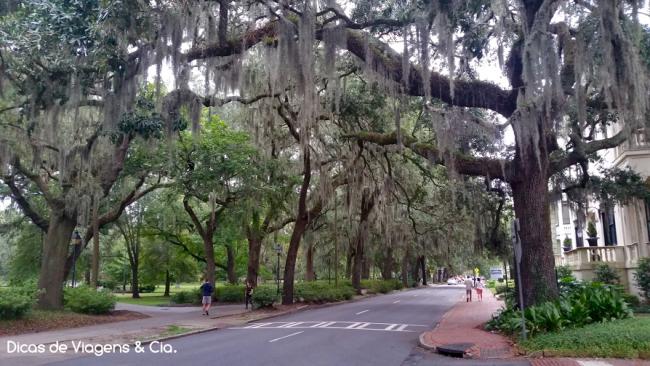 Road trip Estados Unidos: 6º Dia –  Jacksonville > Savannah