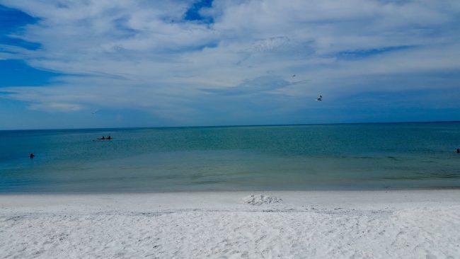 Road Trip Estados Unidos: 12º Dia – Honeymoon Island/Clearwater