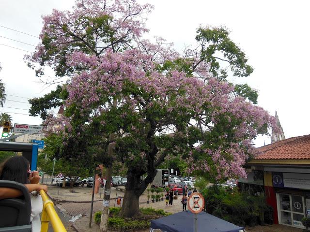image2 4 - Linha Turismo Porto Alegre