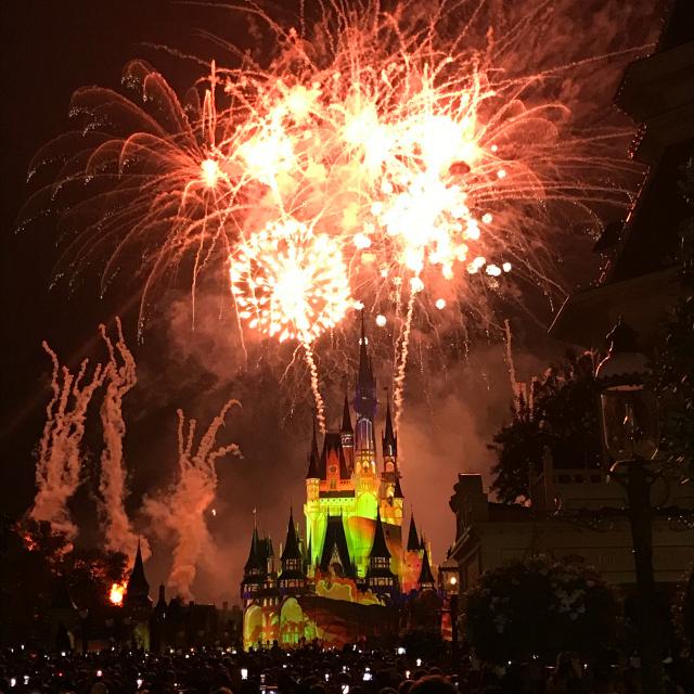 O que fazer em um dia na Disney?
