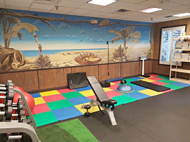 Holiday Inn Hotel Suites Clearwater Beach S Harbourside Indian Rocks Florida Gym - Um Hotel para relaxar na Flórida: Holiday Inn & Suites Clearwater Beach S-Harbourside