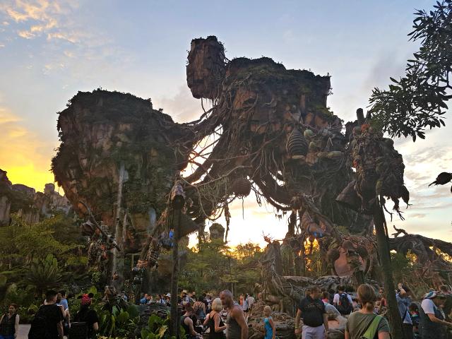 Pandora World Avatar Disney Animal Kingdom - O que fazer em um dia na Disney?
