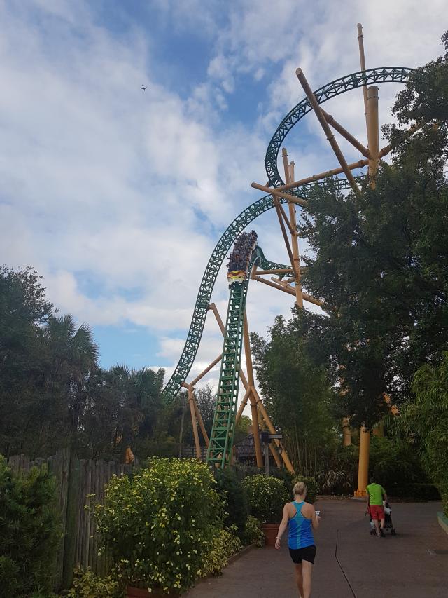 Busch Gardens Tampa Cheetah Hunt - O Parque mais Radical da Flórida: Busch Gardens