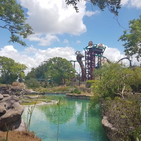 O Parque mais Radical da Flórida: Busch Gardens