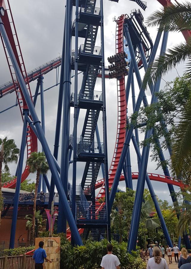 Busch Gardens Tampa Sheikra Montanha Russa - O Parque mais Radical da Flórida: Busch Gardens