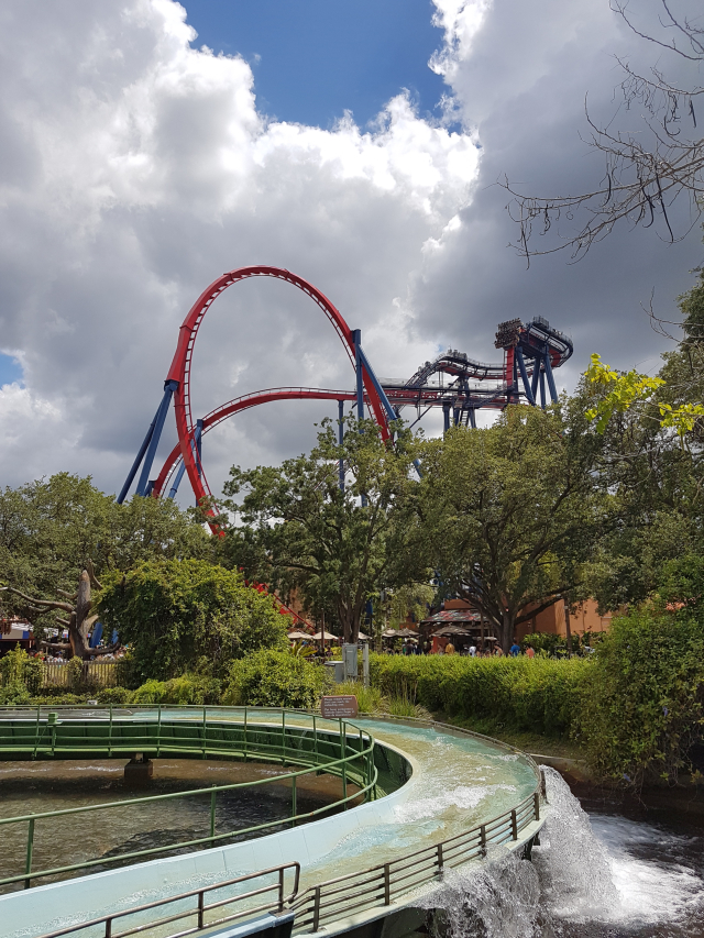 Busch Gardens Tampa Sheikra - O Parque mais Radical da Flórida: Busch Gardens