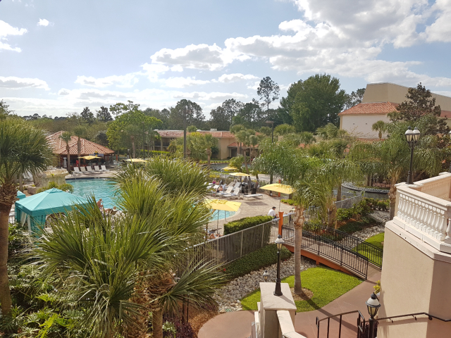 DoubleeTree by HIlton Hotel Orlando at SeaWorld Piscina - Hotel em Orlando: DoubleTree by Hilton Hotel Orlando at SeaWorld