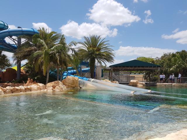 Parque Aquatica Orlando Dolphin Plunge Tunel Transparente - Parque Aquatica em Orlando: Conheça o parque aquático do Grupo SeaWorld