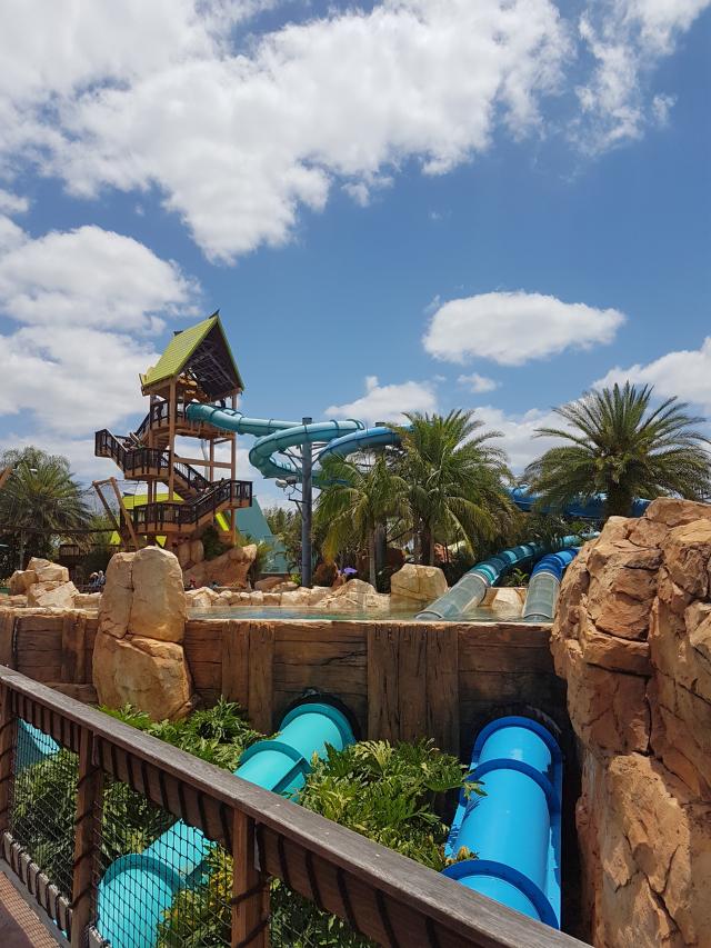Parque Aquatica Orlando Dolphin Plunge - Parque Aquatica em Orlando: Conheça o parque aquático do Grupo SeaWorld