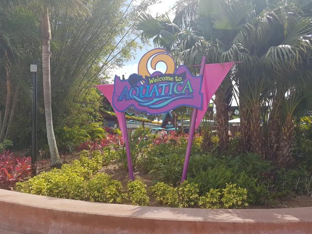 Parque Aquatica Orlando Entrada - Parque Aquatica em Orlando: Conheça o parque aquático do Grupo SeaWorld