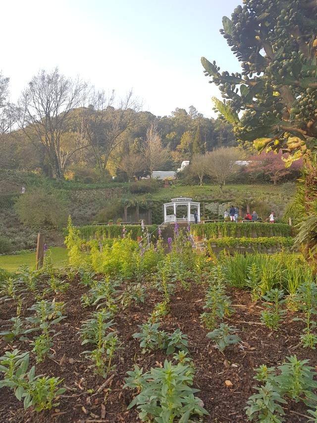 Mini roteiro serra gaucha Le jardin gramado detalhes - Um final de semana na Serra Gaúcha